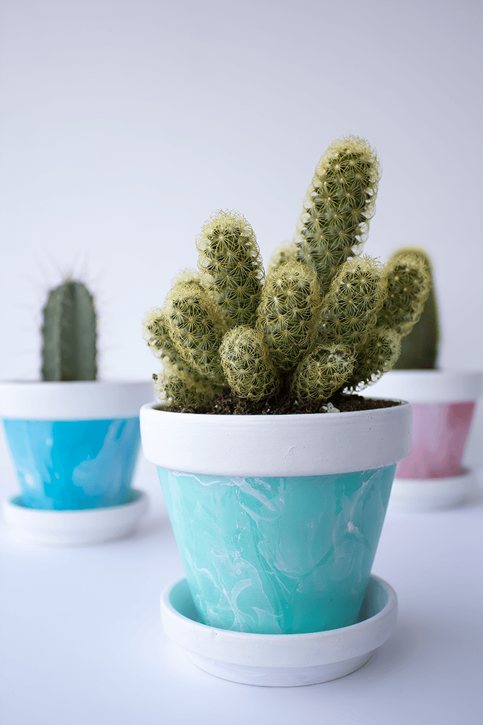 Add some lovely pops of colour with these mini marbled painted pots. A great DIY to add to your home decor.