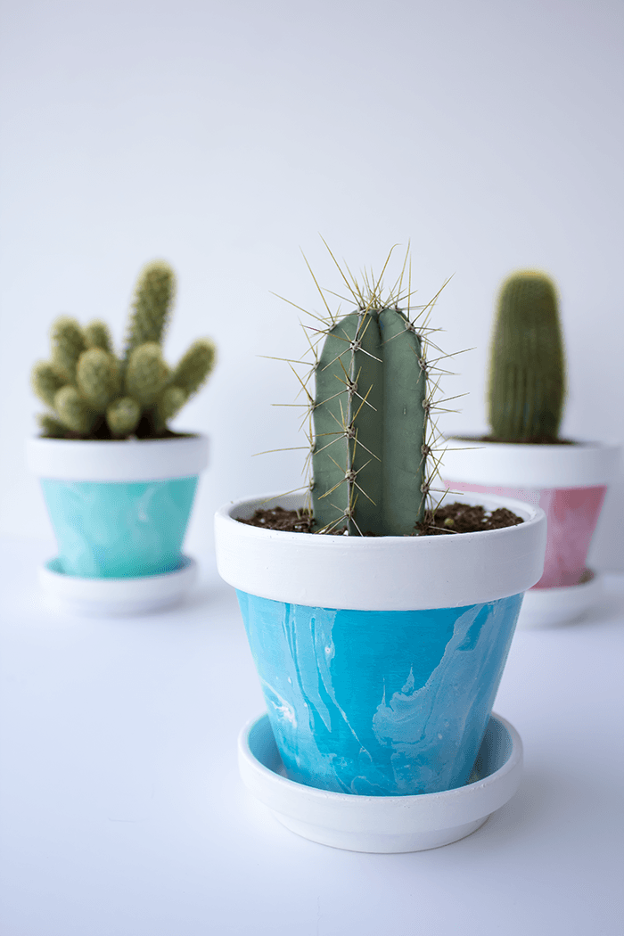 Add some lovely pops of smoky colour with these mini marbled painted pots. A fun DIY project for your home.
