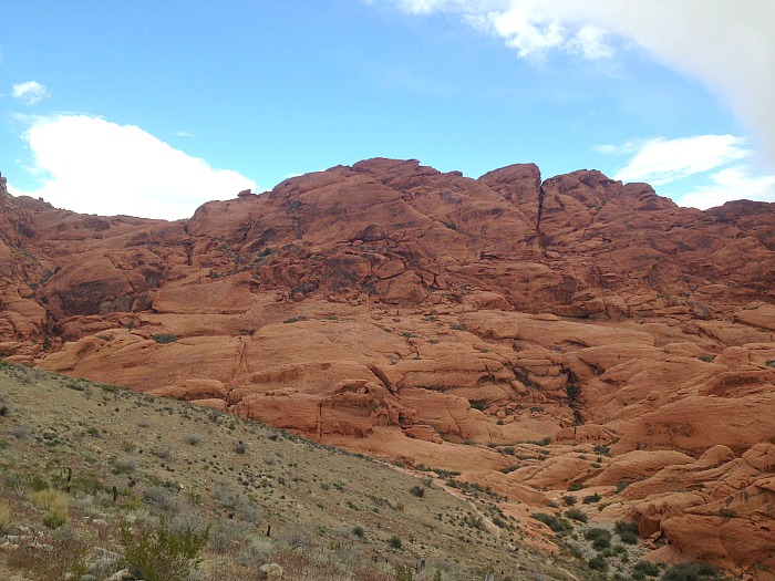 Views from the Road - Red Rock Canyon
