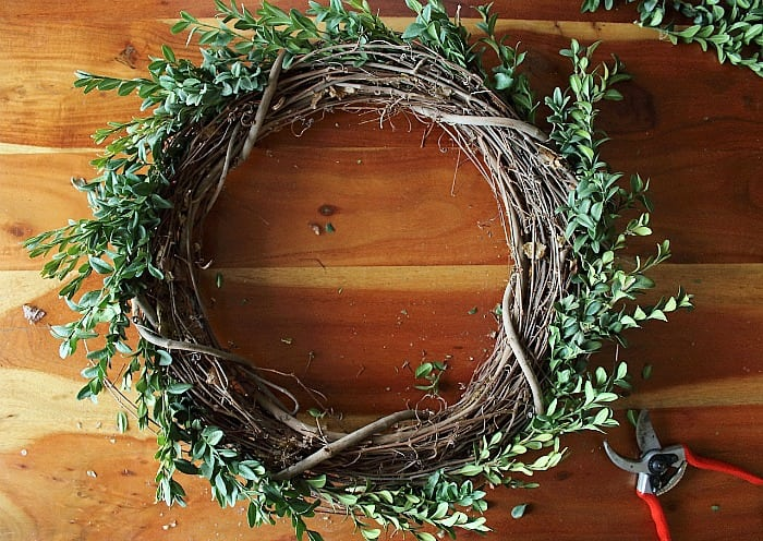 How to Make a Boxwood Wreath - first circle.