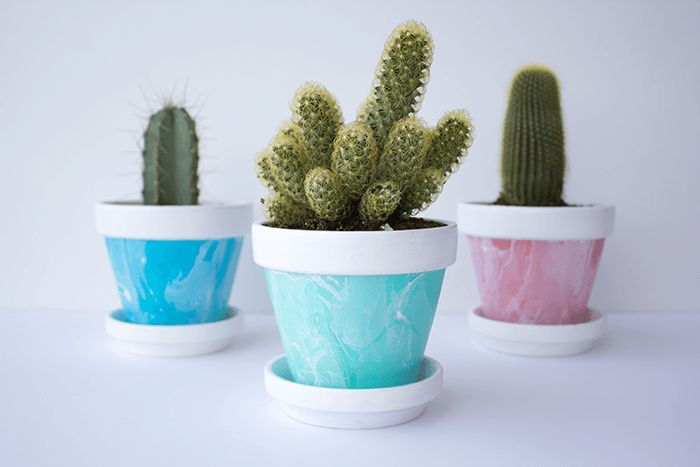 Pot and Display - Mini Marbled Painted Pots