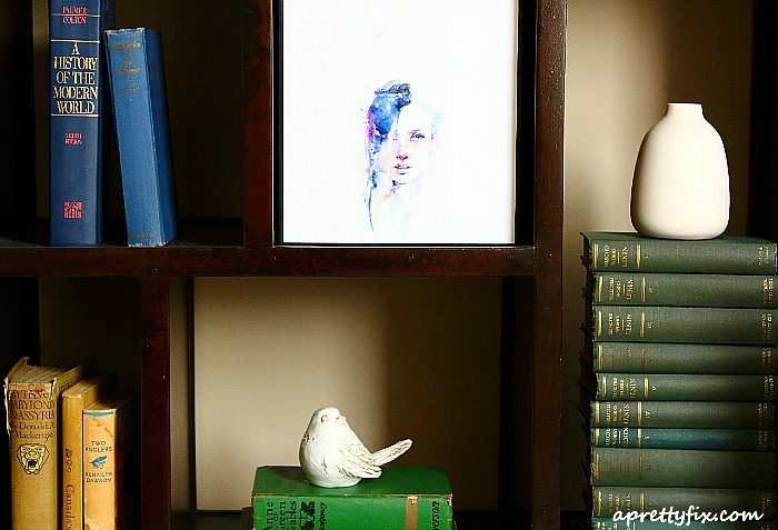 bookshelf up close