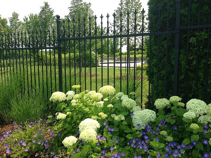 Tawse gardens